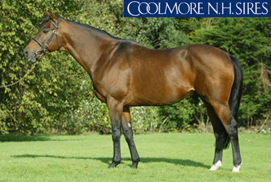 FLEMENSFIRTH (USA)