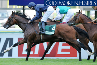 IMPERIAL MONARCH (IRE)