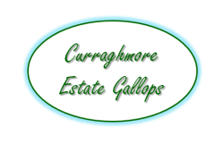 Curraghmore%20Estate%20Gallops%3Cbr%20%2F%3E%3Cem%3E%28By%20appointment%20only%29%3C%2Fem%3E